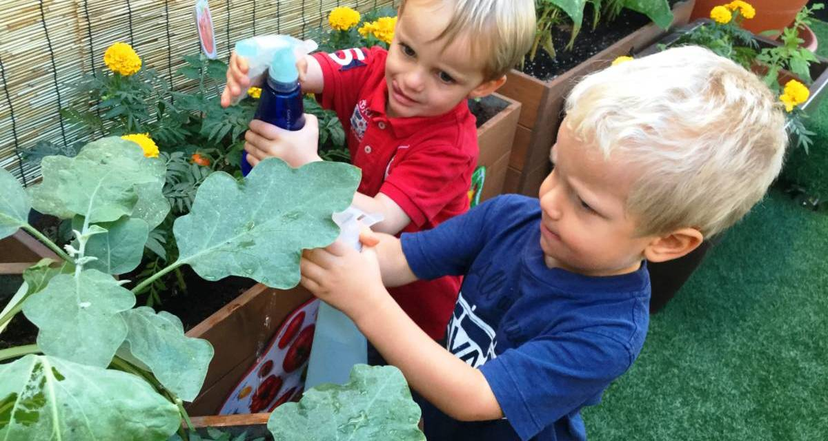 Kids Island – A family run Nursery that offers a weekly Mum and Baby Group
