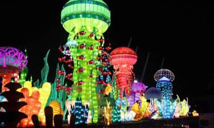 Dubai Garden Glow – Roaring Good Fun!