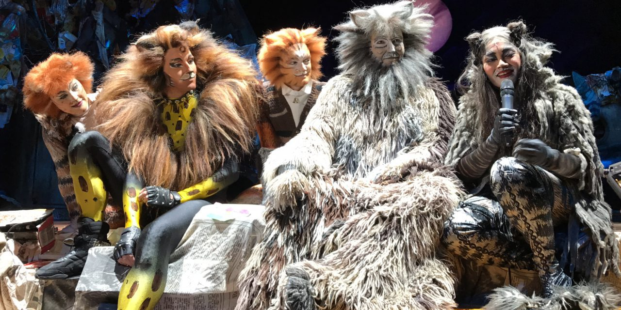 Behind the scenes of CATS at Dubai Opera