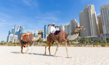 Places to take your visitors in Dubai