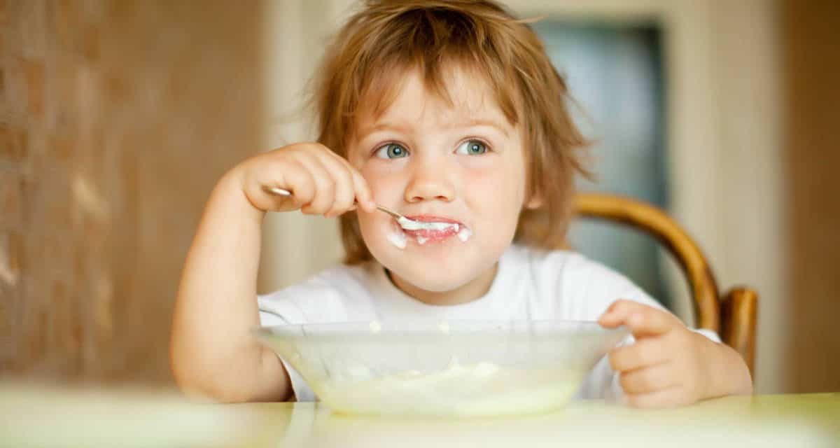 Can't Eat Won't Eat: The unforgiving world of toddler feeding!